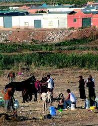 Agentes de la Policía Nacional levantan dos asentamientos ilegales en Almendralejo
