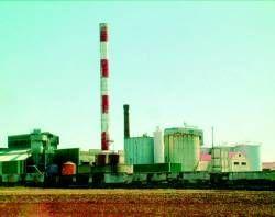 Viñaoliva prevé tener concluida la nueva destilería dentro de un año en Almendralejo