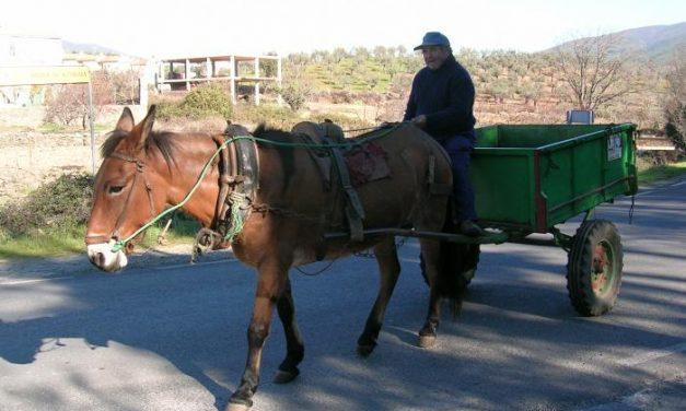 Extremadura recibe 10 millones de euros para programas agroganaderos y de desarrollo rural