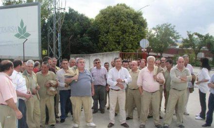 Veintidós empleados fijos discontinuos de Cetarsa en Coria protestan por el recorte laboral en la actual campaña