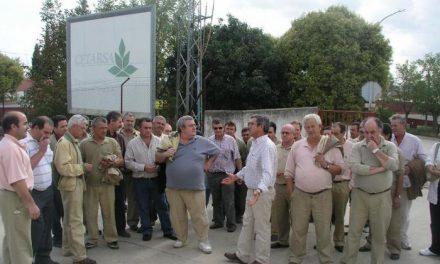 El director general de Cetarsa opina que el futuro de las ayudas para el cultivo del tabaco es prioritario