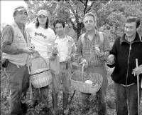 El ayuntamiento de Jarandilla de la Vera limita la recogida diaria de setas a cuatro kilos