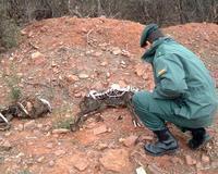 Los autores de las cacerías de animales exóticos de Monterrubio irán a juicio el próximo 14 de diciembre