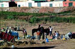 Agentes de la policía levantan dos asentamientos ilegales de portugueses y rumanos en Almendralejo