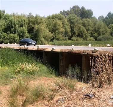 El PP regional insta a la Junta de Extremadura a señalizar los puntos negros de las carreteras extremeñas