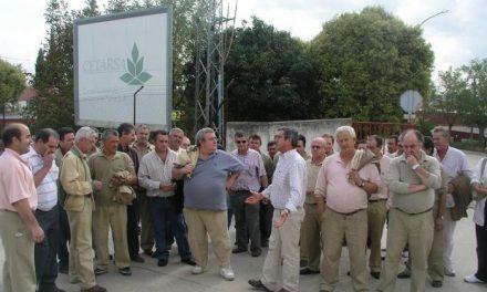 Bruselas decide el futuro de 25.000 familias extremeñas cuya economía depende del cultivo del tabaco