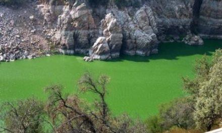 La nueva aventura de la Asociación Deportiva Milmás organiza la prueba 'Tajo Vivo: Extremadura por agua'