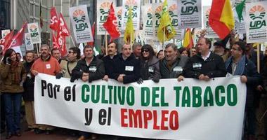 La UE acuerda una ayuda adicional para las explotaciones pequeñas de tabaco