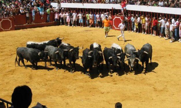 La ganadería Partido de Resina obtiene dos premios taurinos por su participación en San Buenaventura 2008