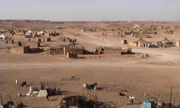 La XIII Caravana de la Paz espera llevar este año 150.000 kilos de alimentos al Sahara desde Extremadura