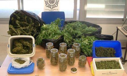 La Policía Nacional detiene a tres jóvenes, de entre 18 y 21 años, en la ciudad de Badajoz por cultivar marihuana