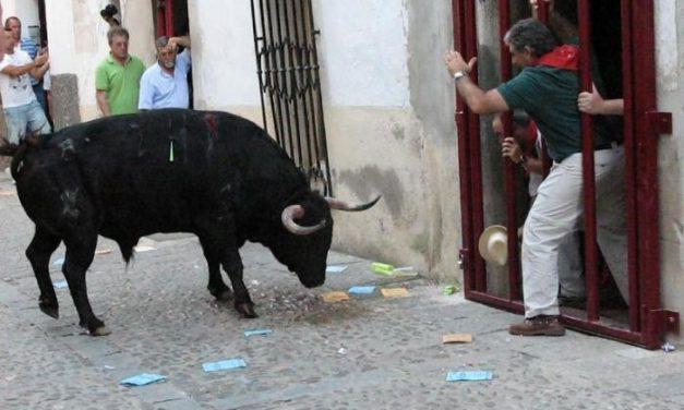 """""""Madrilecho"""" llenó de emoción las calles de Coria"""