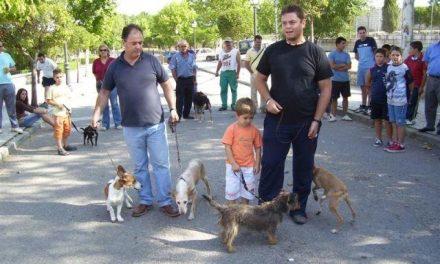 Garrovillas de Alconétar congrega a 70 perros de caza en la I muestra organizada por el ayuntamiento