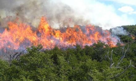 Extremadura se une a 4 regiones para mejorar las herramientas informáticas en la lucha contra los incendios