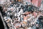 El reciclaje alcanza los 35 kilos al año por habitante en Cáceres y se potencia con más medios