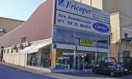 La alcaldesa de Plasencia Elia Blanco negociará este mes en Madrid la mejora de la avenida Martín Palomino