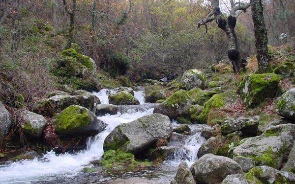 Extremadura establece 25 medidas contra el cambio climático para ejecutar entre los años 2009 y 2011