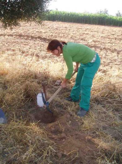 La asociación de desarrollo del Ambroz organiza cuatro cursos gratuitos sobre producción agraria