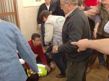 Herido grave un policía local de Arroyo de la Luz al ser arrollado por un caballo
