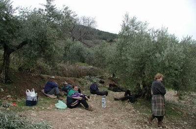 Dos jornaleros pacenses fallecieron el viernes cuando se dirigían a recoger aceituna en Solana de los Barros