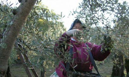 Vara se compromete con las mujeres rurales a eliminar los obstáculos en las explotaciones agrarias