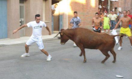 Vegaviana y La Moheda de Gata celebran sus fiestas patronales con festejos taurinos y verbenas