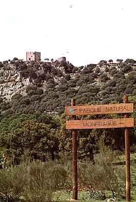La Cámara de Comercio de Cáceres respalda y apoya el futuro corredor Plasencia, Trujillo y Monfragüe