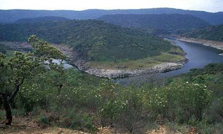 El SEPRONA denuncia al Parque Nacional de Monfragüe y a TRAGSA por unas obras de pavimentación