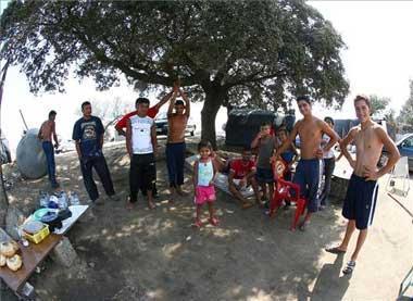 Extremadura podrá contratar a búlgaros y rumanos inscritos en las campañas de recolecciones agrícolas