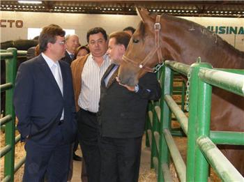 Trujillo inaugura la III Feria del Caballo con la presencia del presidente de la Junta, Guillermo Fernández Vara
