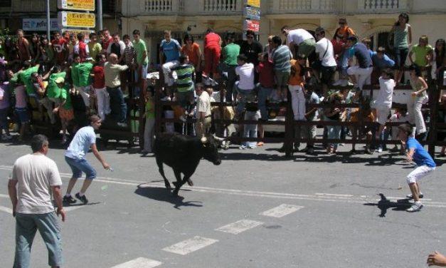 El Ayuntamiento de Coria mantiene que no habrá encierro matinal el 26 de junio con becerras o vaquillas
