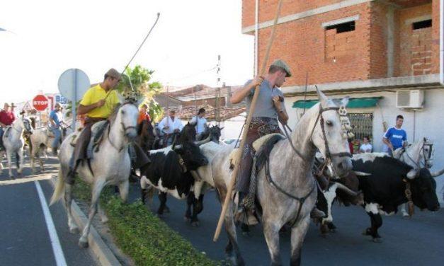 La Junta diseña rutas de agroturismo para visitar explotaciones de toros de lidia y de ganado equino