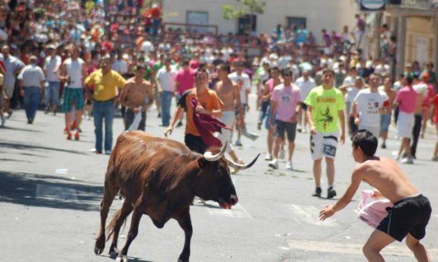 San Juan 2009 comienza con la lidia de la vaca de la peña de La Rana que ha finalizado sin incidentes ni percances