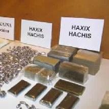 La Guardia Civil detiene a nueve integrantes de una red de tráfico de cocaína en las provincias de Ávila y Cáceres