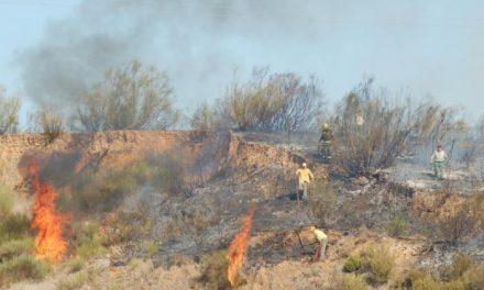 Un incendio provocado afecta a cuatro hectáreas de matorral próximas al Hotel Montesol de Coria