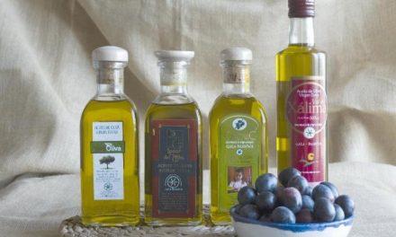 El sector olivarero del norte de Cáceres prevé una campaña de aceituna «muy alta» con cifras records