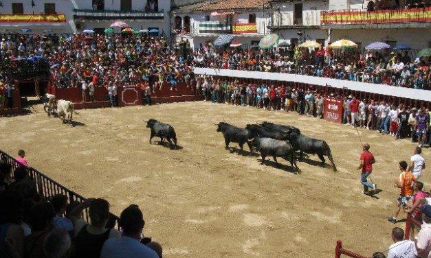 El Ayuntamiento de Moraleja valora positivamente que los menores no participen en festejos taurinos