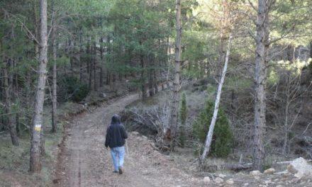 La Asociación Ademoxa de Moraleja organiza una ruta de senderismo por la Sierra de Gredos