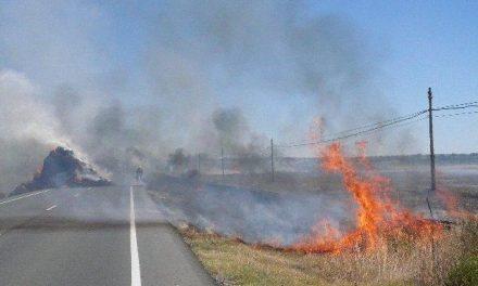El incendio de un remolque cargado de paja dificulta la circulación en la carretera que une Cilleros con Portugal