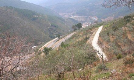 El valor económico integral de los montes extremeños se estima en más de 13.900 millones de euros