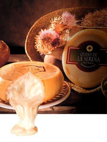 El mejor queso del mundo