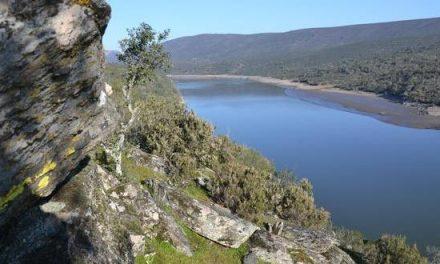 Echávarri anuncia la concesión de más de 800.000 euros a 37 municipios incluidos en la Red Natura 2000
