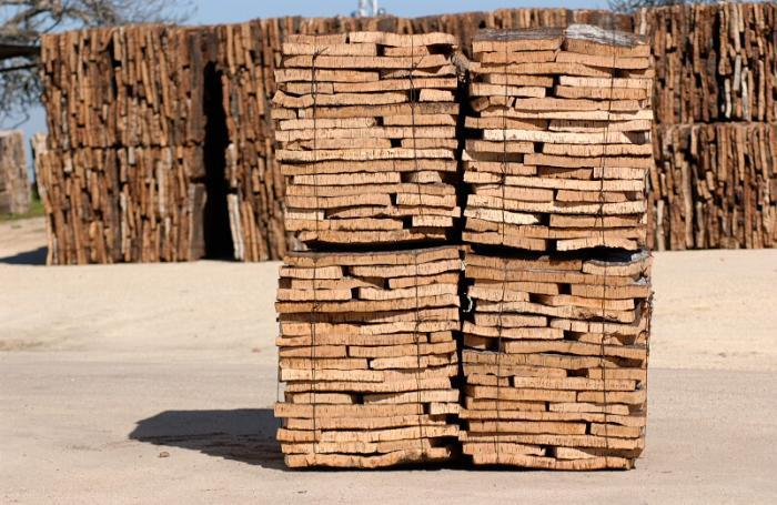 La campaña de corcho en Extremadura comienza con la expectativa de buenos precios