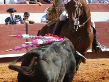 Los eventos taurinos estarán presentes en la XIX Feria Rayana con corridas de rejones y espectáculos de forcados