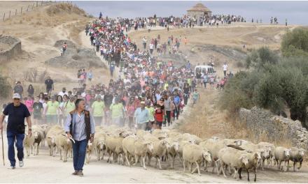 Casar de Cáceres: cultura pastoril / Casar de Cáceres: pastoral culture