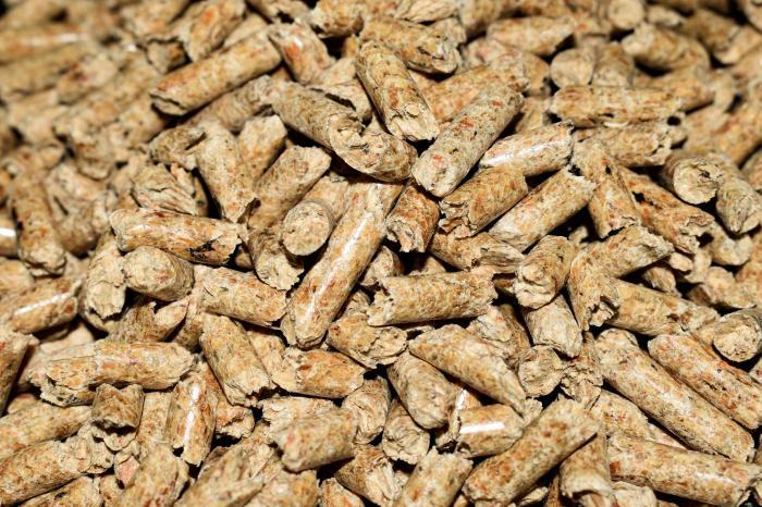La empresa de biomasa de Moraleja recibirá 2 millones de euros para su puesta en marcha
