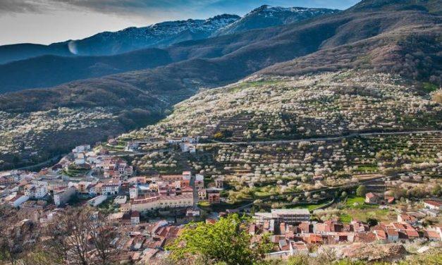 Unas 720 empresas turísticas participan en un estudio de la Diputación para conocer la repercusión de la crisis