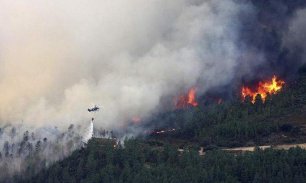 La Junta espera un verano complicado en materia de incendios forestales por las lluvias y el confinamiento
