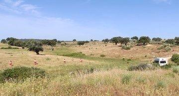 Guardia Civil y voluntarios buscan con drones a la mujer desaparecida en Bohonal de Ibor