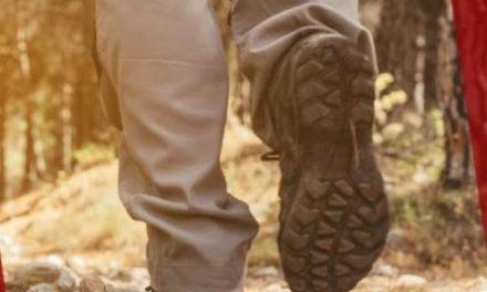 La Diputación impulsa los tres tramos de los caminos jacobeos a su paso por la provincia